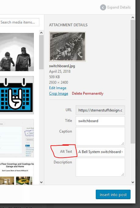 Where to find the alt text input in the WordPress media library